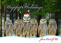 Owl of Us Christmas Cards